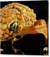 Gecko - Id 16218-130646-3343 Canvas Print
