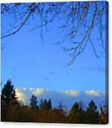 Geese Across The Sky Canvas Print