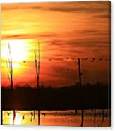 Geese Flying Into The Sunset Canvas Print
