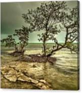 Geiger Key Shoreline Canvas Print