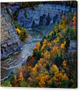 Genesee River Gorge II Canvas Print