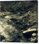 Gentle Creek Flow Canvas Print
