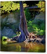 Gentle Giant 122317-1 Canvas Print