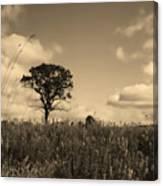 Gentle Landscape Canvas Print