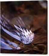 Gentle Ripple In River Canvas Print