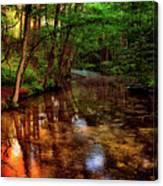 Gentle Stream Canvas Print