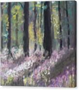 Gentle Wakening Canvas Print
