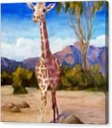 Geoffrey Giraffe Canvas Print