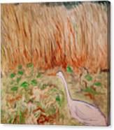 Georgetta's Walk Canvas Print