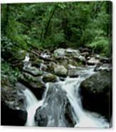 Georgia Mountian Stream Canvas Print