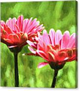 Gerbera Daisies To Brighten Your Day Canvas Print