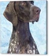German Shorthaired Pointer 663 Canvas Print