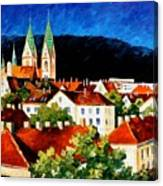 Germany Freiburg Canvas Print