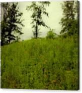 Gettysburg Landscape Canvas Print