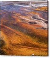 Geyser Basin Springs 7 Canvas Print