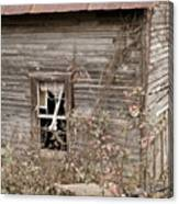 Ghostly Abndoned House Canvas Print