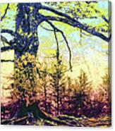 Giant Canvas Print