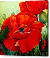 Giant Poppies 3 Canvas Print