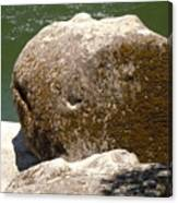Giant Prehistoric Petrafied Tadpole Canvas Print