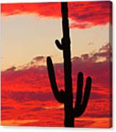 Giant Saguaro  Southwest Desert Sunset Canvas Print
