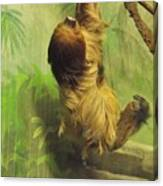Giant Sloth     June          Indiana Canvas Print