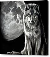 Gibbous Wolf Canvas Print