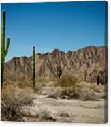 Gila Mountains And Sonoran Desert Canvas Print