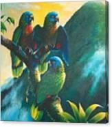 Gimie Dawn 1 - St. Lucia Parrots Canvas Print