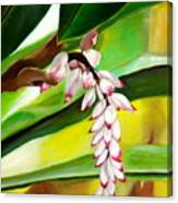 Ginger Bloom-2015 Canvas Print