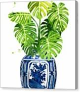 Ginger Jar Vase 1 With Monstera Canvas Print