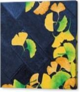 Ginkgo Leaves On Pavement Canvas Print