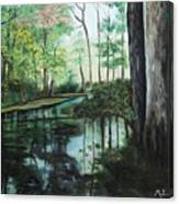 Ginny Springs Canvas Print