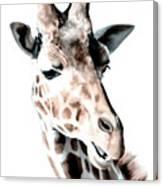 Giraffe II Canvas Print