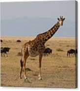Giraffe In The Serengeti Canvas Print
