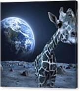 Giraffe On Moon Canvas Print