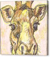 Giraffe Postcard Canvas Print