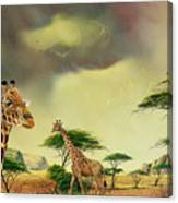 Giraffes At Thabazimba Canvas Print