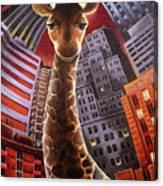 Giraffes Often Starve In Babylon Canvas Print