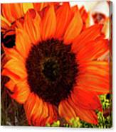 Girasol Naranja Canvas Print