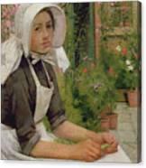 Girl Shelling Peas Canvas Print