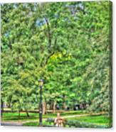 Girl Uninterrupted In Central Park Canvas Print
