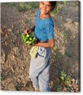 Girl With Vegetables.... Canvas Print
