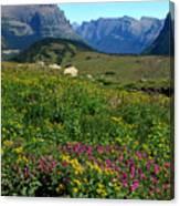 Glacier Blooms Canvas Print