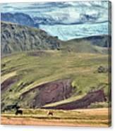 Glacier Mountains Meadows Horses Canvas Print
