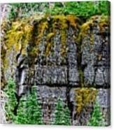 Glacier Np Moss Canvas Print