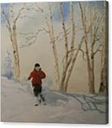 Glades Canvas Print