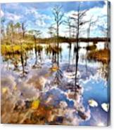 Glades Reflective 1 Canvas Print