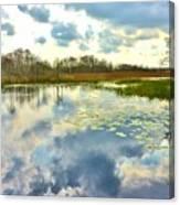 Glades Reflective 2 Canvas Print