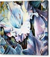 Glads White  Canvas Print