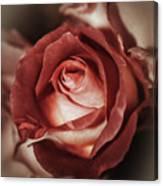 Glamorous Rose Canvas Print